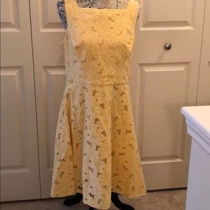 NWT Maggy London Lemon Mist dress